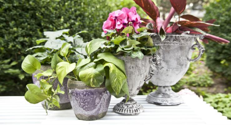 accesorios jarrones decorar terrazas