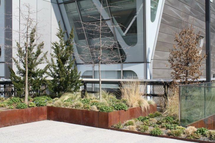 amplios armarios pasto patio regeneracion consejos