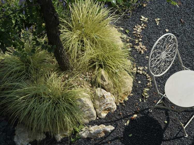 arboles plantas arena negra gravilla