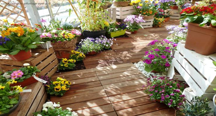 Balcones y terrazas peque as cincuenta ideas para decorar for Plantas colgantes para balcones