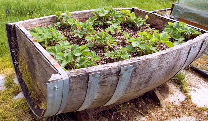 barriles decorados rustico plantas jardines negocios