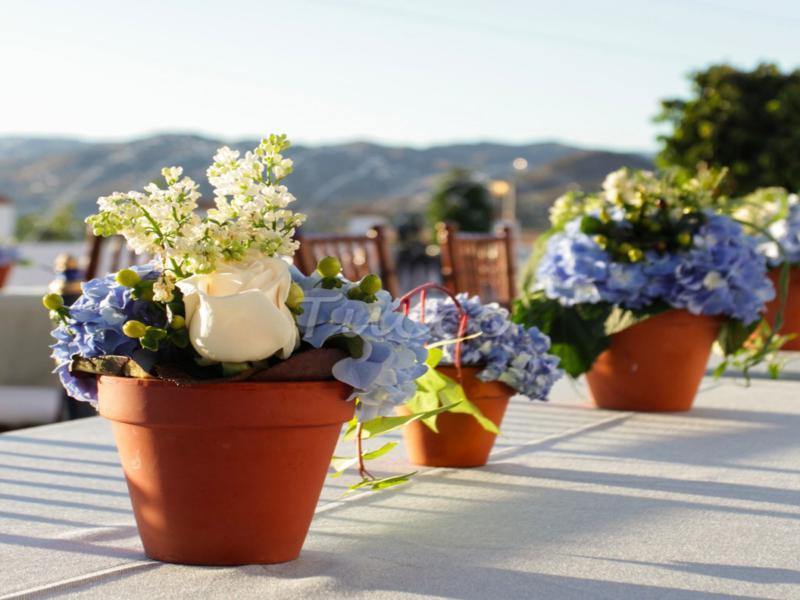 bonita decoración mesa terraza macetas