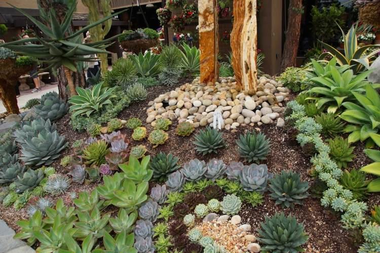 bonita decoracion jardin piedras plantas