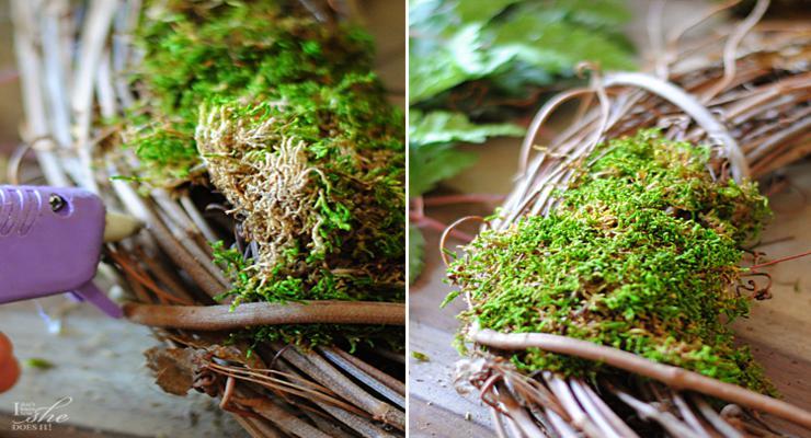 corona original musgos madera