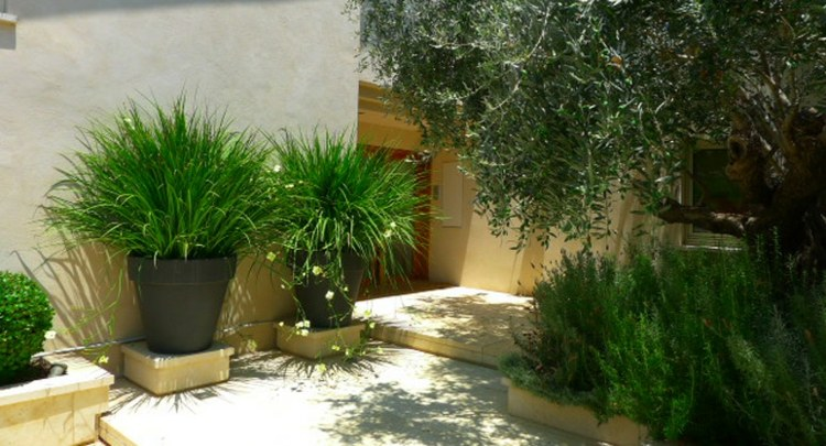 Minimalismo en el jard n 100 dise os paisaj sticos for Decoracion de patios con macetas