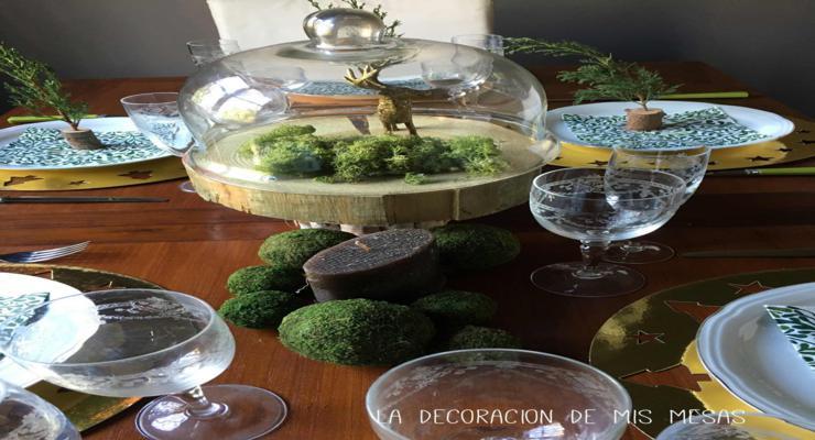 terrarios decoraciones musgos mesa