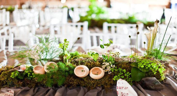 decoracion centro musgos naturales