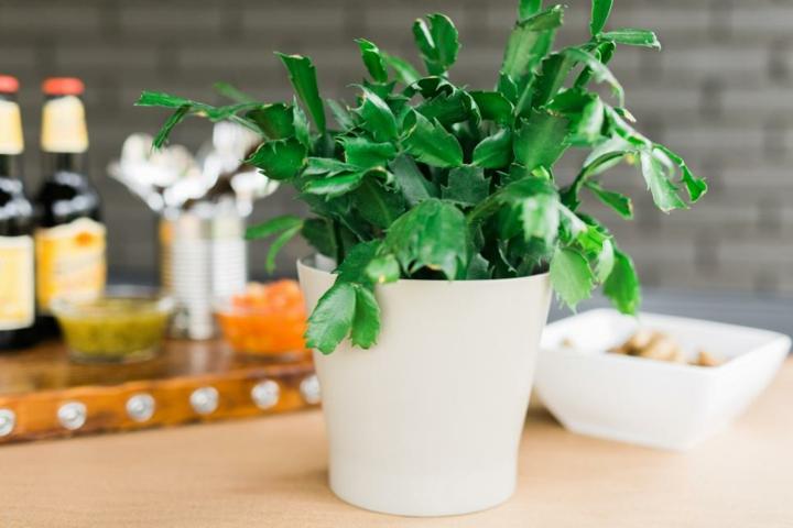 decoracion mesa jardin soluciones macetas blanco