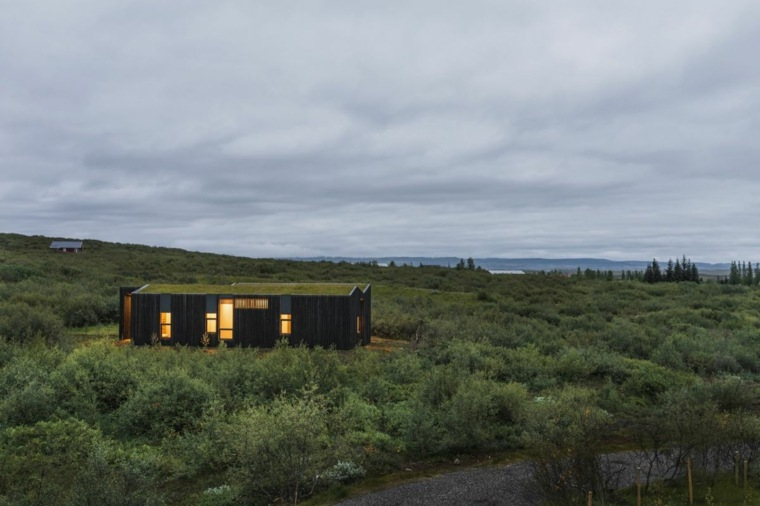 green roof country house design