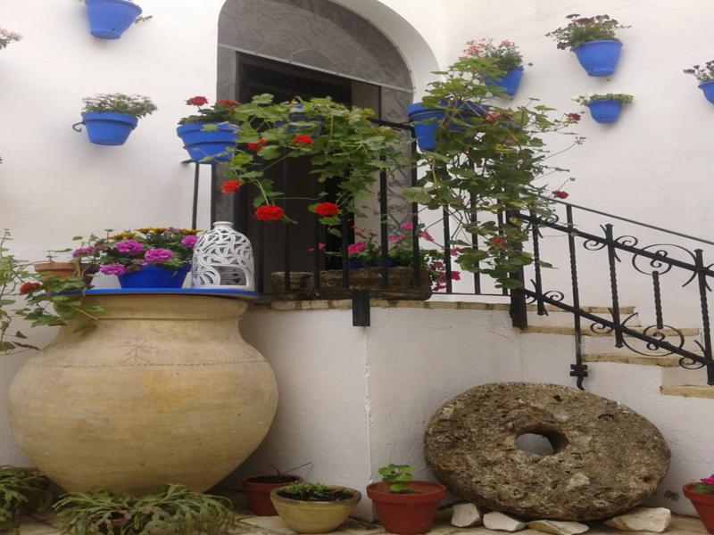 escaleras patio macetas geranios azules