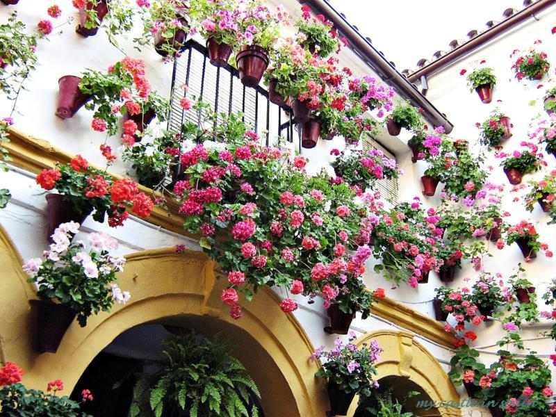 Muebles De Diseño Sevilla : Decoracion andaluza motivos patrones y colores con