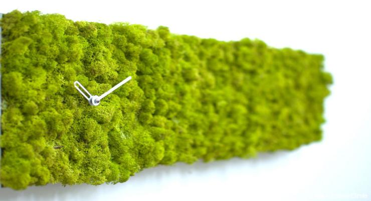 reloj rectangular diseño musgos