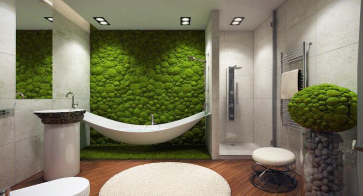 pared baño cubierta musgos