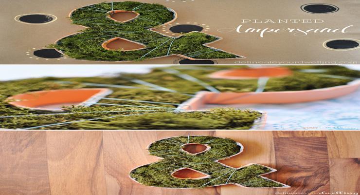 formas letras macetas musgis