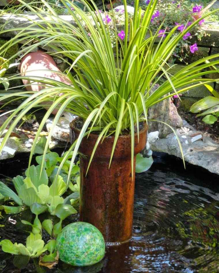 fuente jardin plantas opciones hierba montana japonesa ideas