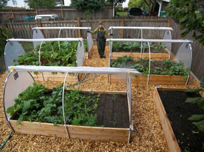 Huerto en casa una fuente inagotable de frutas y vegetales - Pequeno huerto en casa ...