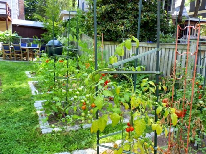 huerto en casa diseños pieles satos tomates