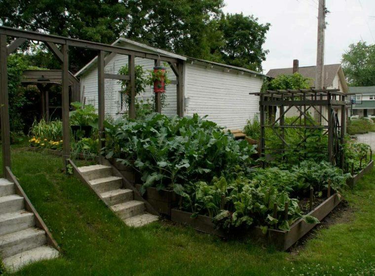 jardin diseno cesped pergola madera plantas ideas