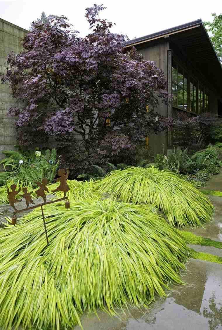 jardin japones opciones hierba montana camino arbol ideas