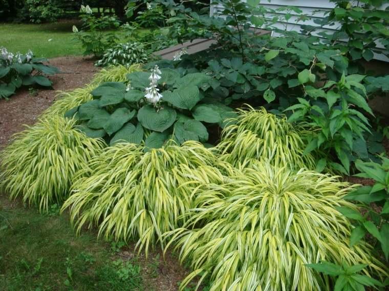 jardin japones opciones hierba montana decora ideas
