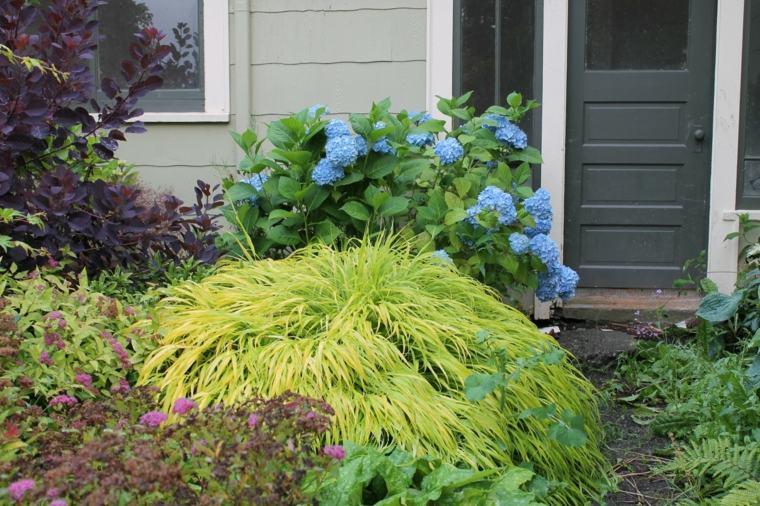 jardin japones opciones hierba montana entrada casa ideas