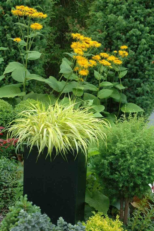 jardin japones opciones hierba montana maceta negra ideas