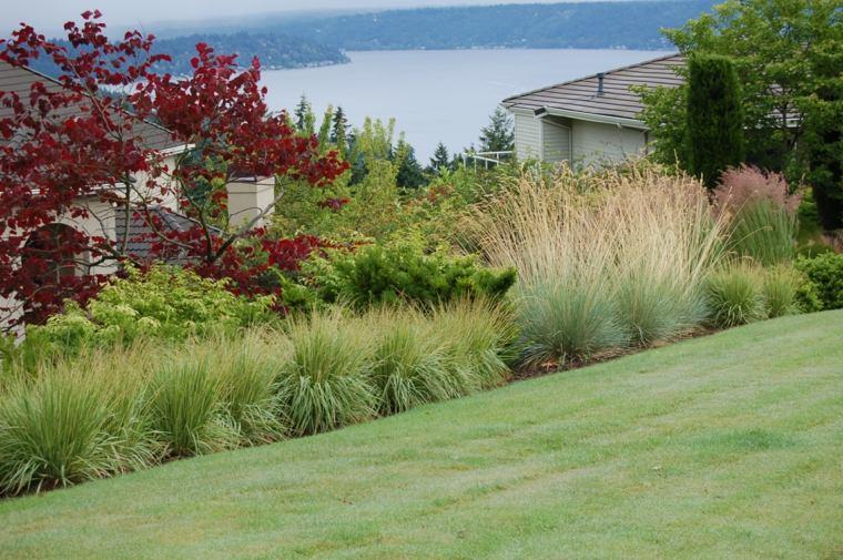 jardin japones opciones hierba montana marca limites ideas