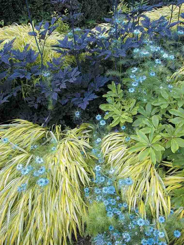 Jardin japones ideas de hierba japonesa de monta a for Hierba jardin