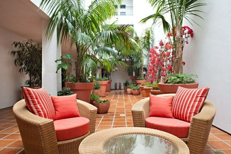 jardin pequeno diseno moderno tropical ideas