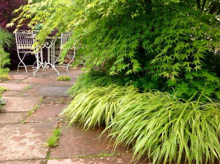 jardin plantas opciones hierba montana japonesa acero muebles ideas