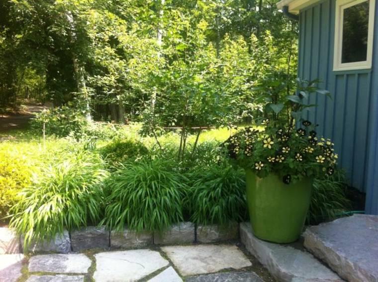 jardin plantas opciones hierba montana japonesa decora entrada ideas