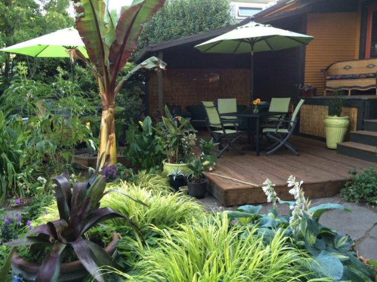 jardin plantas opciones hierba montana japonesa lugar descanso ideas