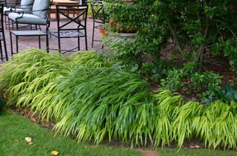 jardin plantas opciones hierba montana japonesa sillas acero ideas