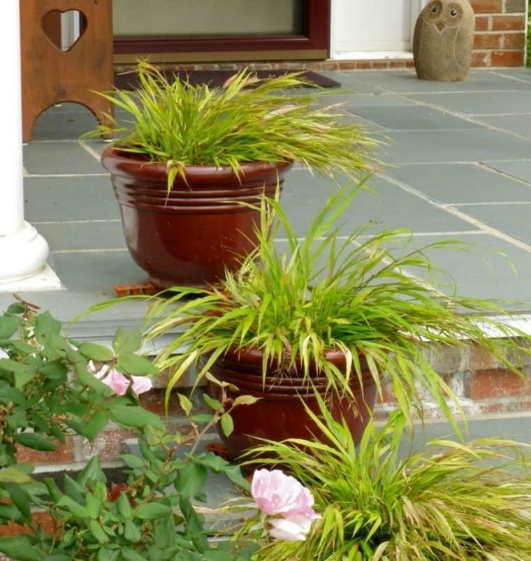 jardin plantas opciones hierba montana japonesa macetas escaleras ideas