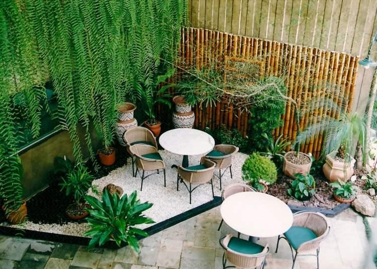 jardin terraza plantas gravilla modernas