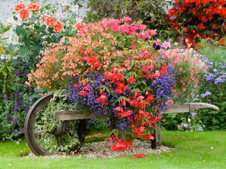 jardineria paisajismo flores primavera carito ideas