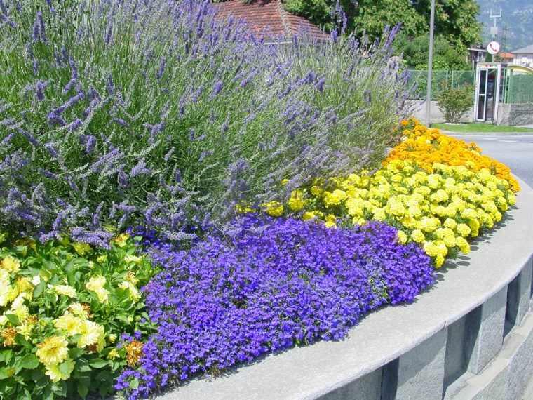 jardineria paisajismo flores primavera muralla colores ideas