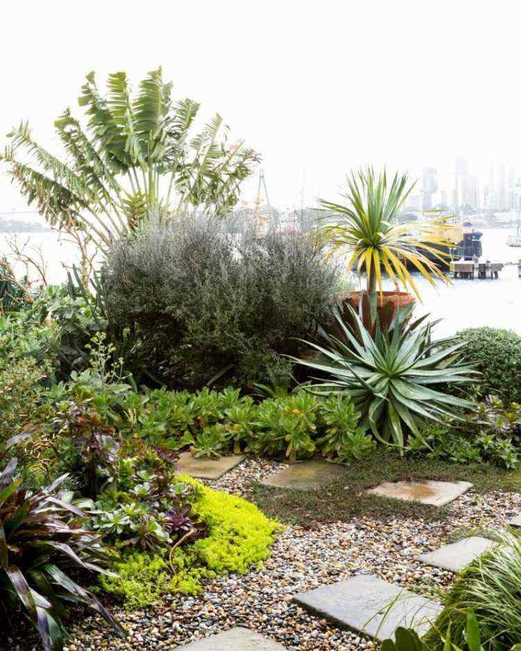 jardines modernos guijarros plantas bonitas