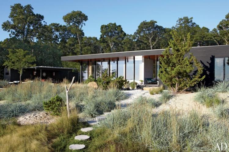 look moderno jardines plantas
