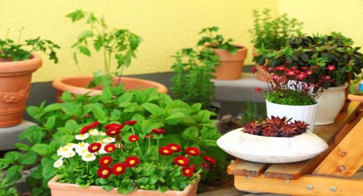 Balcones y terrazas peque as cincuenta ideas para decorar - Macetas originales para plantas ...
