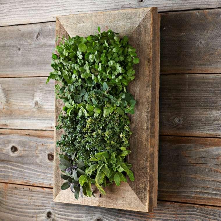 marco madera plantas colgantes