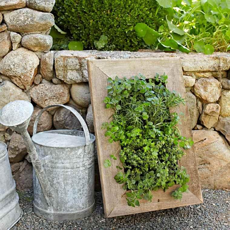 marco plantas especias pared