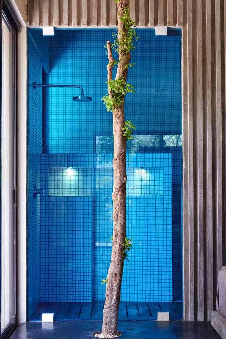mexico casa diseno bano ducha arbol ideas