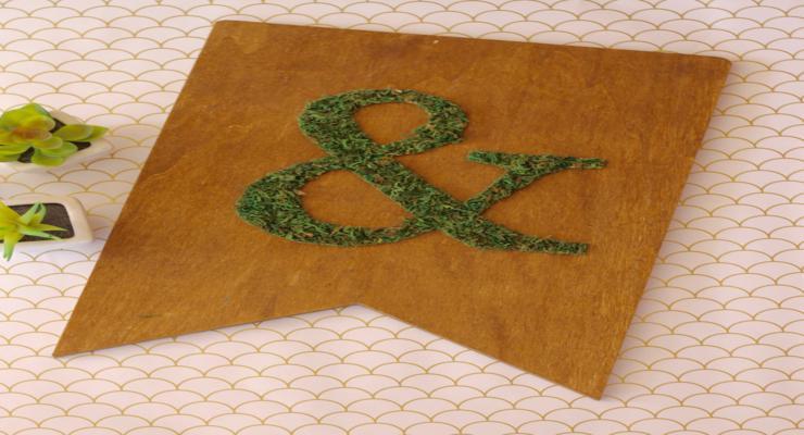 decoración adornos musgos naturales