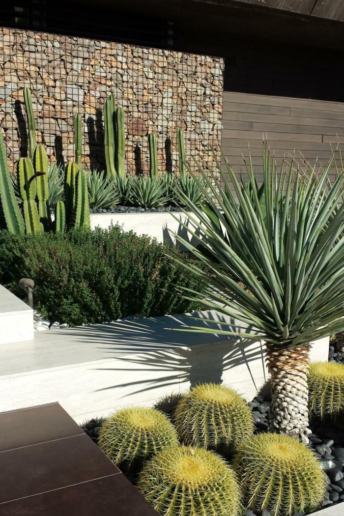 muros ideas elementos soluciones espacios cactus