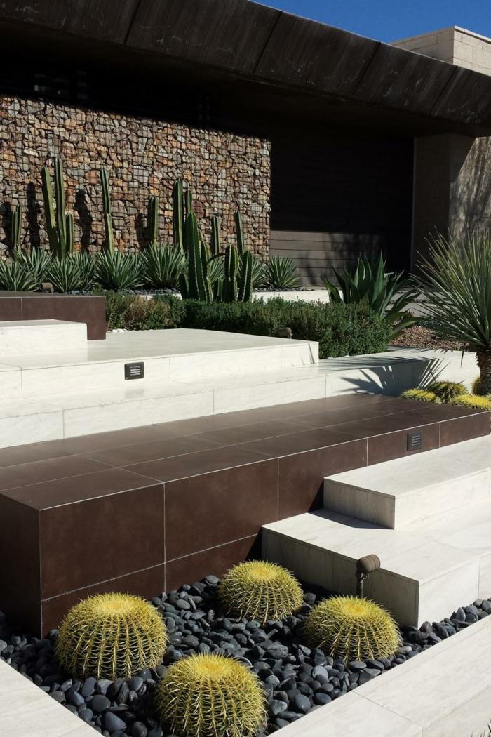 muros ideas minimos paruques cactus