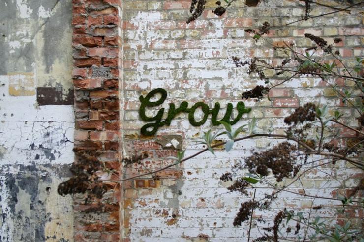 original decoración pared jardín
