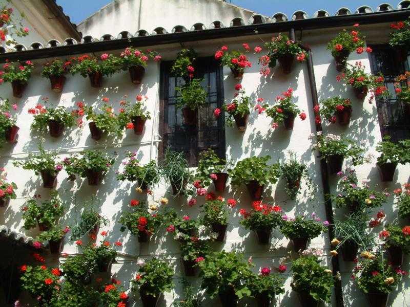Decoracion andaluza motivos patrones y colores con for Decoracion de patios con macetas