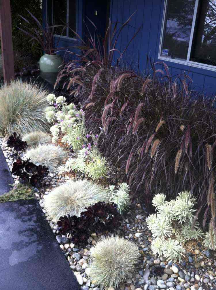 original diseño paisaje plantas guijarros