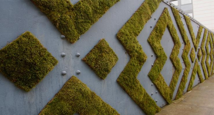 muro exterior decorado musgos